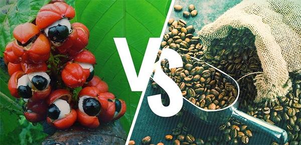 guarana oder kaffee